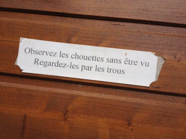 Chouette Refuge de Chateau-Gontier