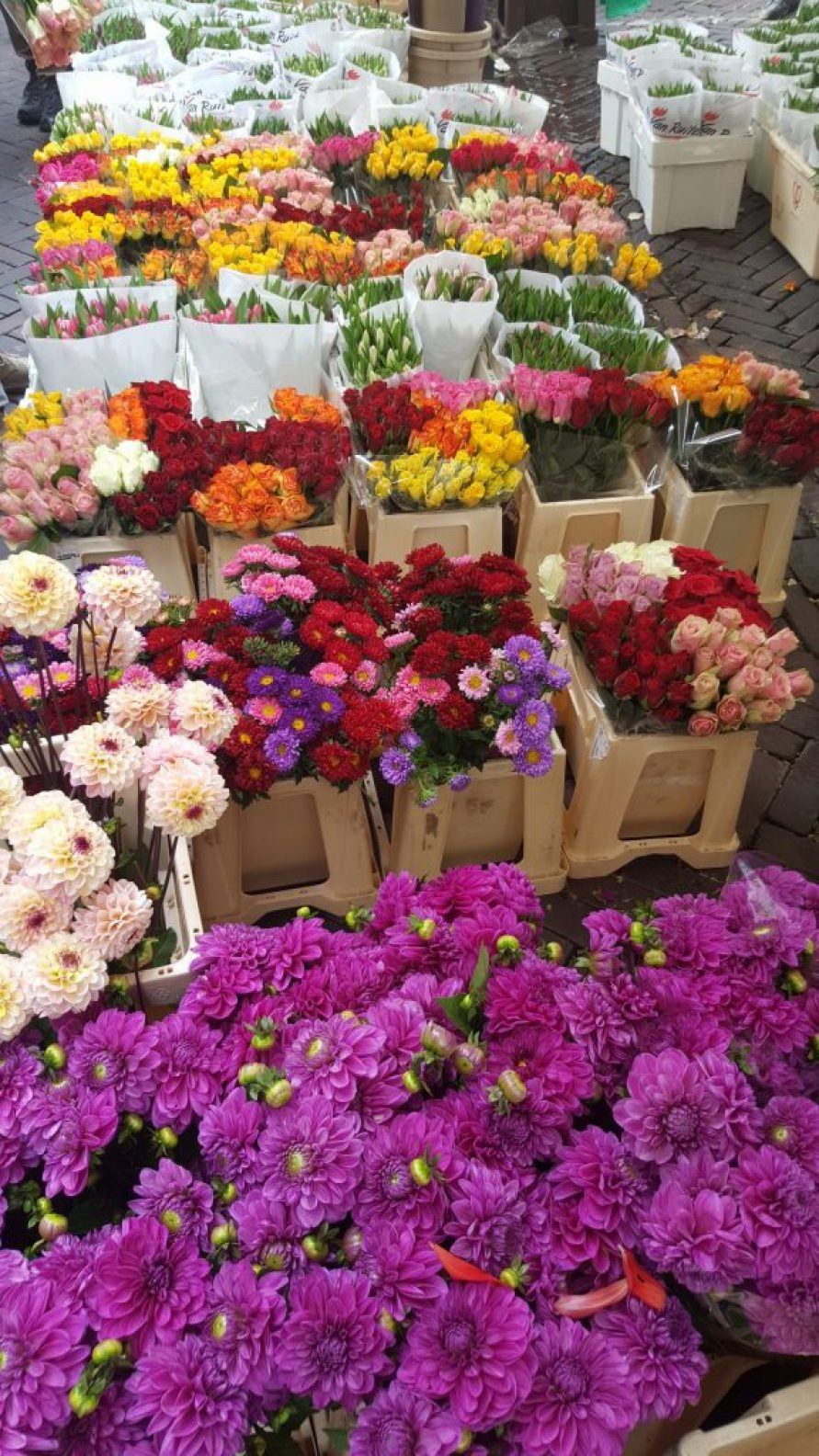 marché aux fleurs Utrecht