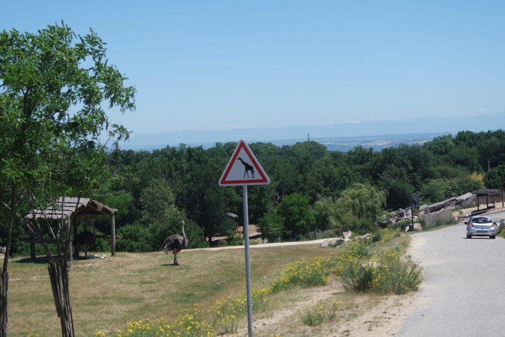 Activités insolites d'Ardèche safari-parc de peaugres