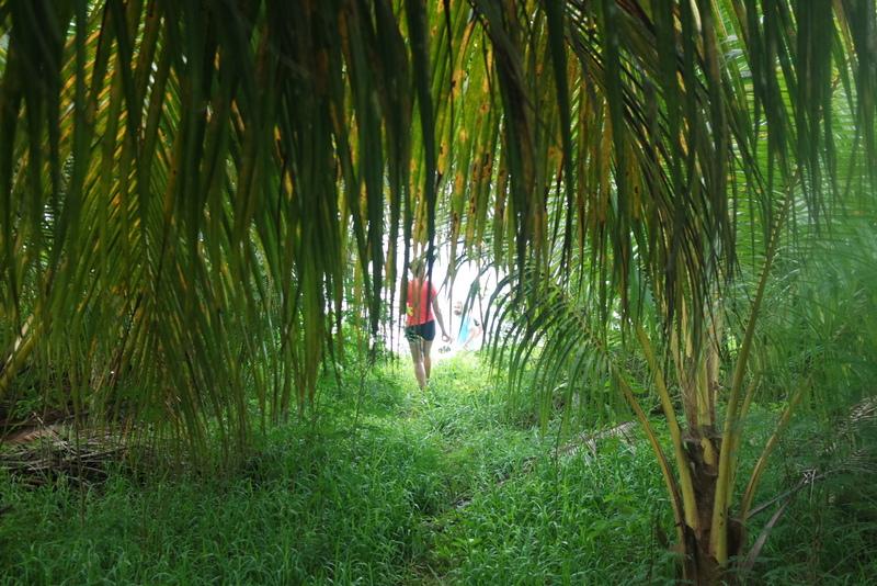 Randonnée écotourisme Seychelles