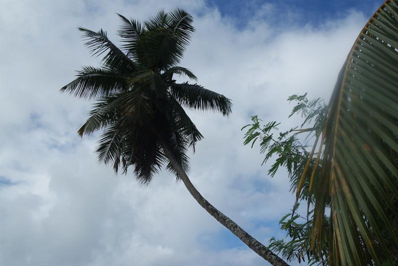 Randonnée nature Seychelles