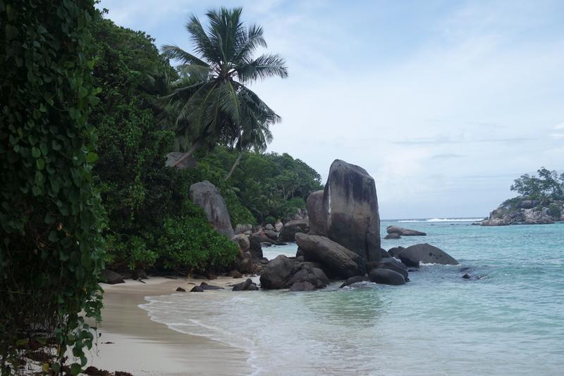Plage de rêve Seychelles