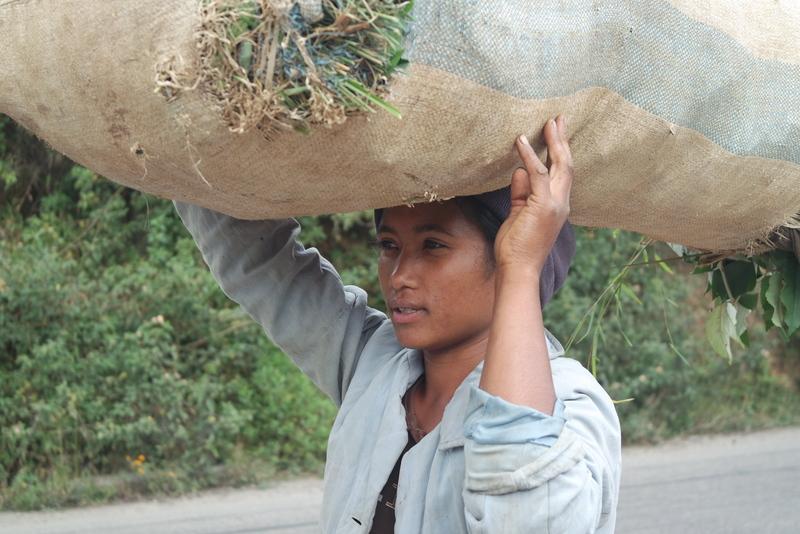 Population locale malgache