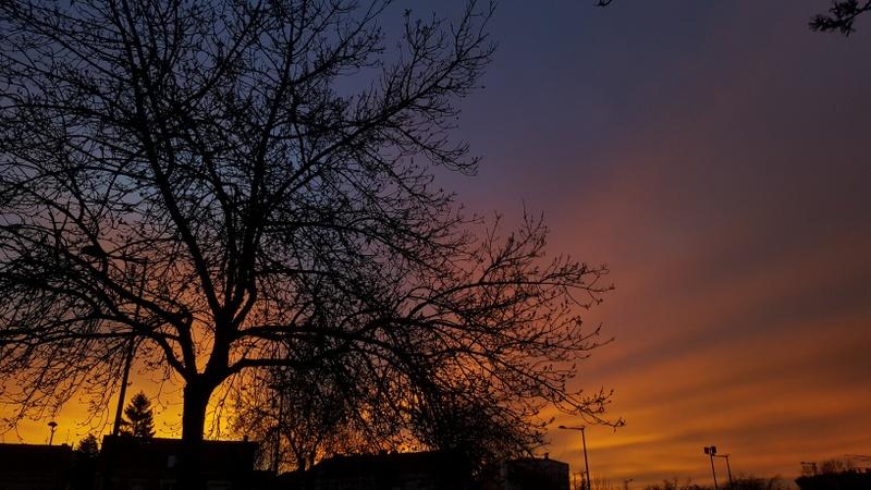 Sunset Bordeaux