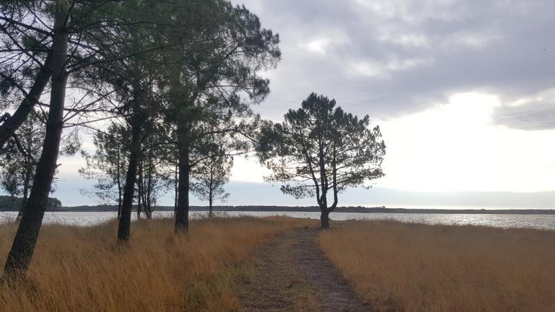 Vue Lac Lacanau en hiver