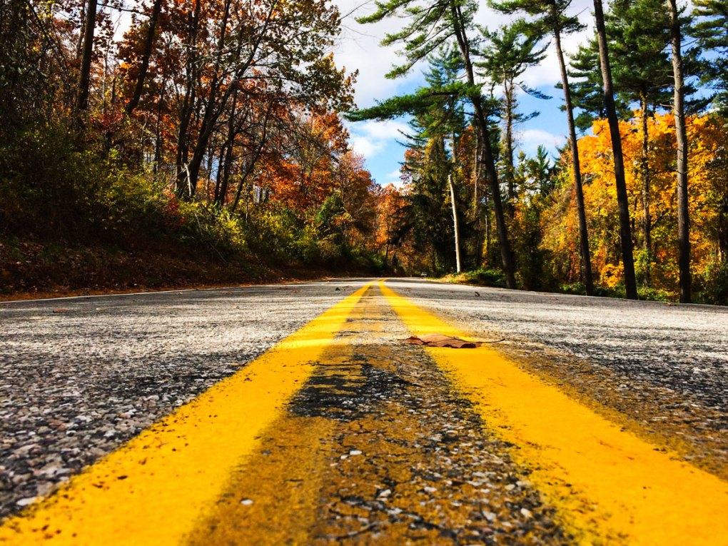 Come guidare negli Stati Uniti, patente, regole e consigli