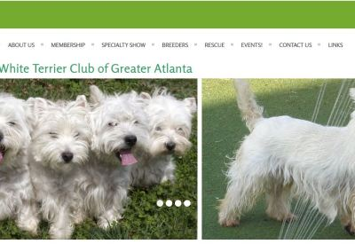 West Highland White Terrier Club of Greater Atlanta
