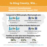 Solid Ground's Undoing Racism brochure - King Co. stats