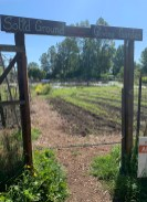 Entrance to Solid Ground's Giving Garden