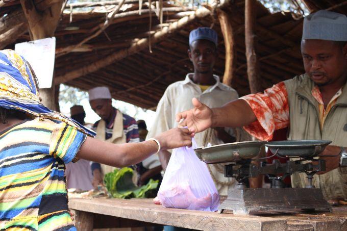 réfugiés cameroun
