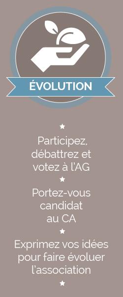 Adhesion-Evolution