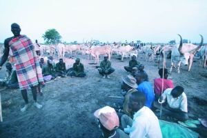 South Sudan Dinka in field with cows