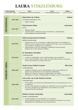 CV Lancaster (Olive Garden) 1/2, uniek cv sjabloon, gratis curriculum vitae voorbeeld, pagina 1
