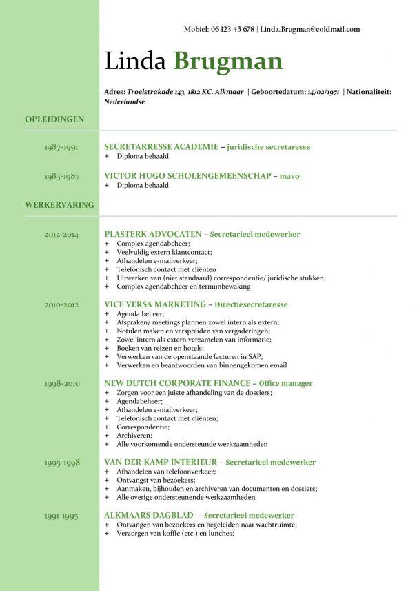 CV Voorbeeld Newport (Mean Green) 1/2, Voorbeeld cv gratis download, office cv, microsoft office cv sjabloon