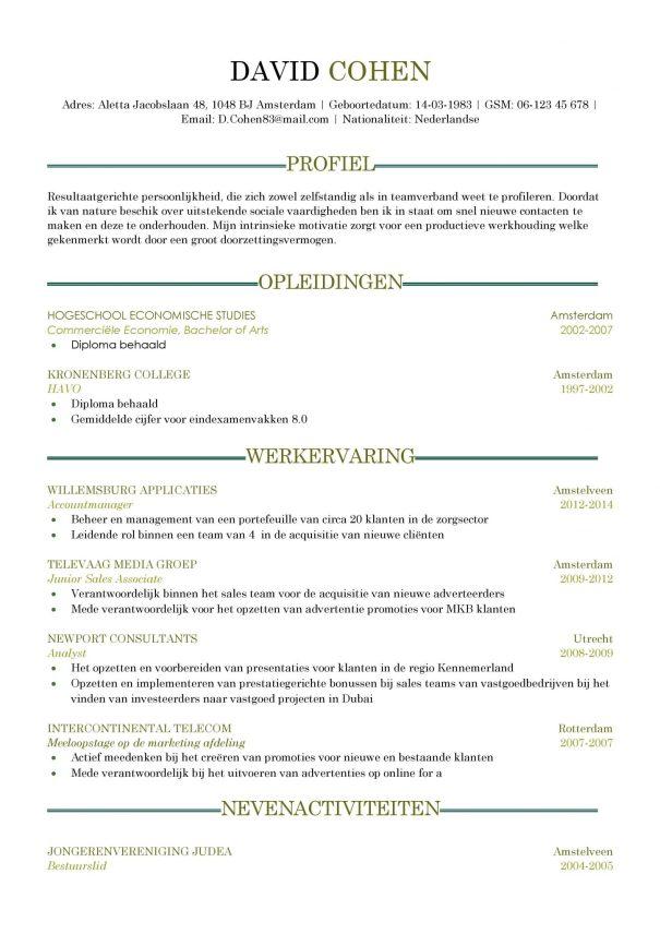 CV Voorbeeld Sheffield (Dark Green) 1/2
