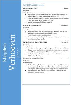 CV Sjabloon Ipswich 2-2 (2 paginas)