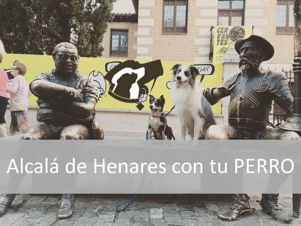 Alcalá de Henares con tu Perro
