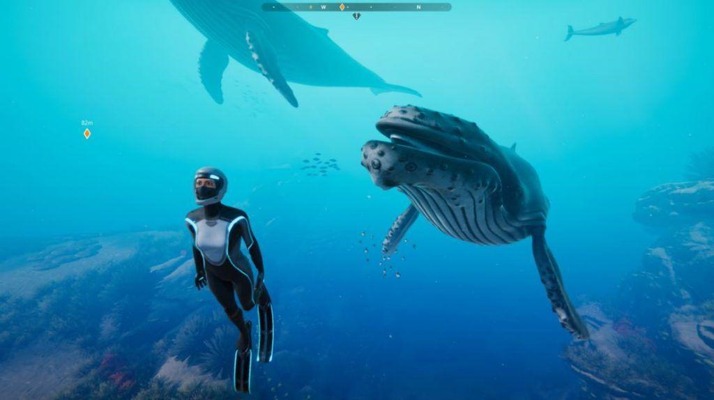 Beyond-Blue-screenshots-ballenas