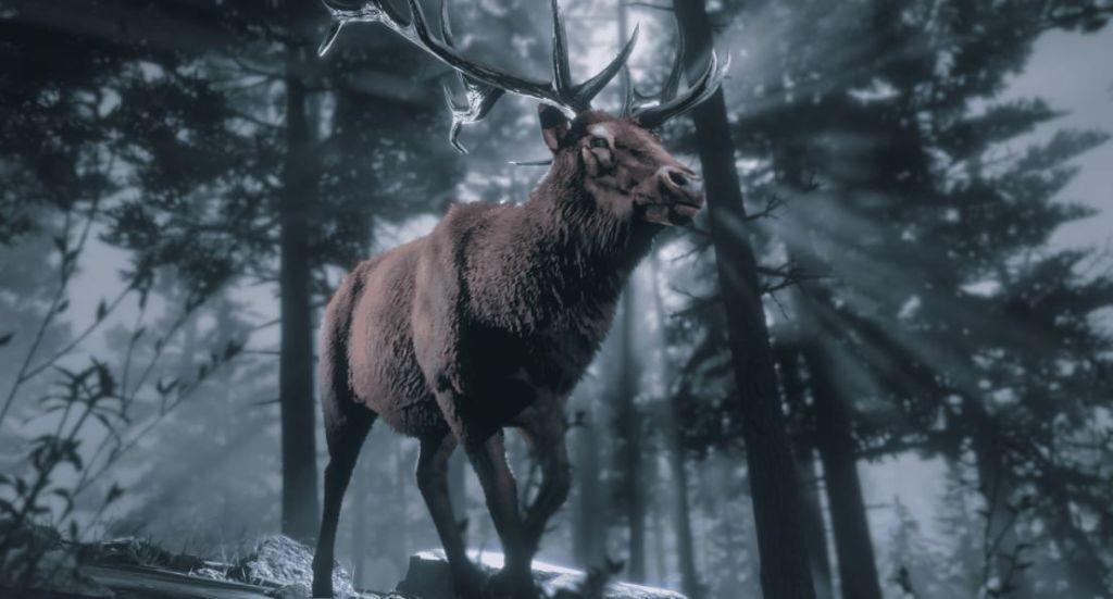 Red-Dead-Online-ubicacion-animales-legendarios-screenshots