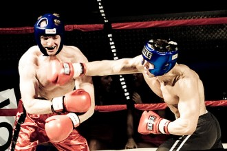pelea box
