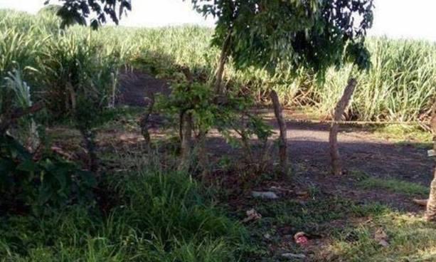 Localizan el cadáver de una persona al interior de un cañal en Usulután