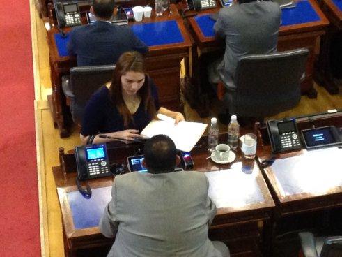 ARENA remueve de su curul a diputada Carolina Rodríguez