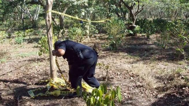 Hombre es asesinado por presuntos pandilleros en una finca de Sonsonate