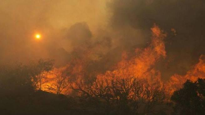 Incendios forestales dejan al menos 10 muertos en California