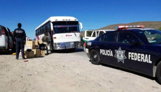 Autoridades mexicanas detienen a 53 salvadoreños que viajaban de forma ilegal a los EE.UU