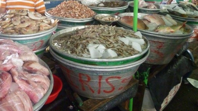 Evita contraer la bacteria que se encuentra en mariscos con estas recomendaciones