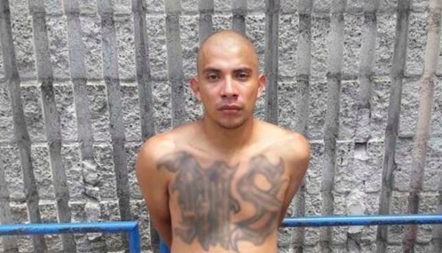 """Capturan en Soyapango con varias porciones de marihuana a pandillero alias """"La Pulga"""""""