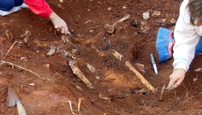 Localizan en Sonsonate osamentas de una persona que habría sido asesinada