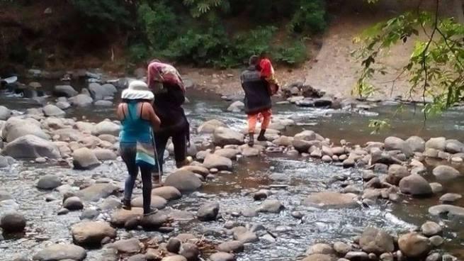 Familia es atacada por un enjambre de abejas en Acajutla