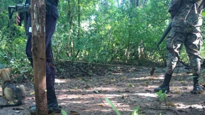Matan a mototaxista dentro de un terreno agrícola en Chapeltique, San Miguel