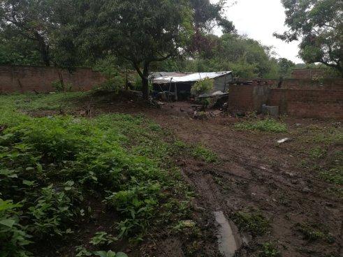 Mujer asesinada a machetazos en Usulután