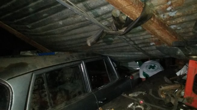 Árbol cae y causa daños en un taller en la colonia Dolores