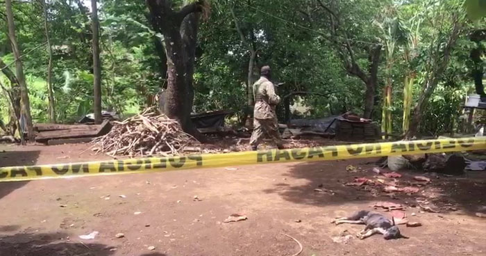 Matan a agricultor en San Jorge, San Miguel