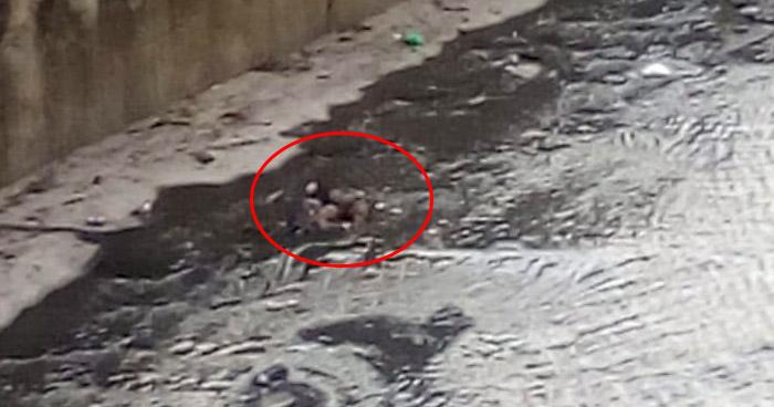 Hallan cadáver en río Acelhuate en San Salvador