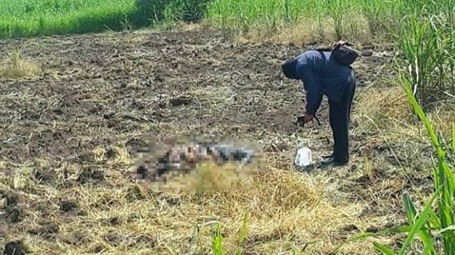Encuentran cadáver en descomposición en Guacotecti, Cabañas