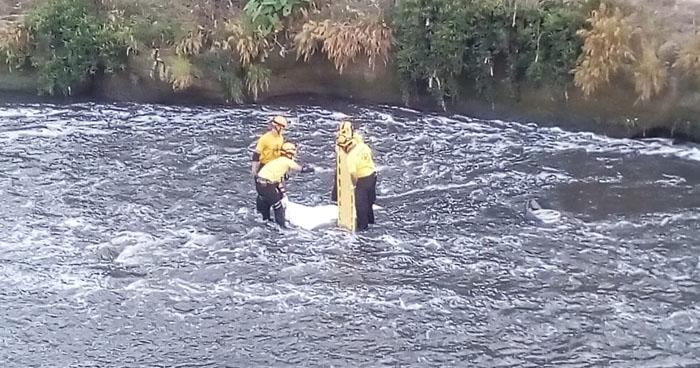 Cadáver de un repartidor de gas fue encontrado en un río de La Paz