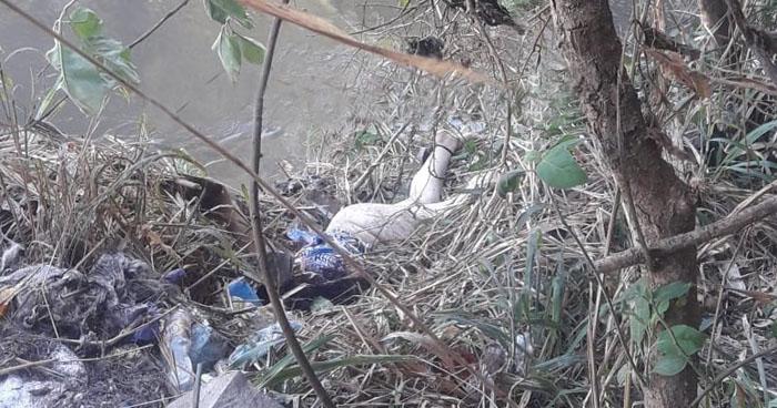 Hallan cadáver semidesnudo de una mujer cerca del río Tomayate