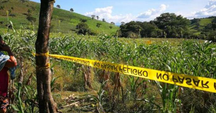 Hallan cadáver en predio de cultivos en San Julián, Sonsonate