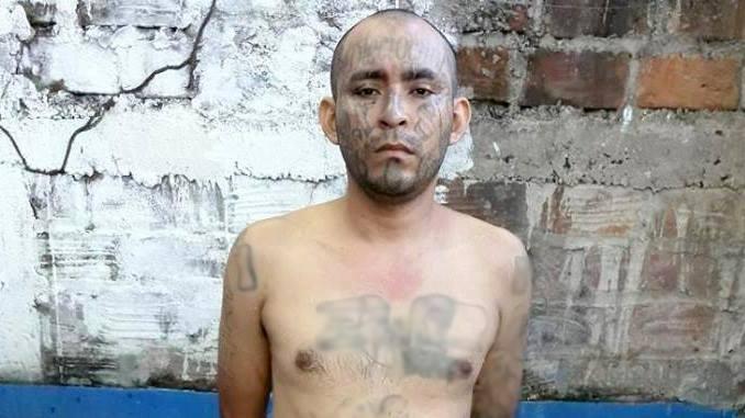 captura de palabrero de la 18 en Zacatecoluca