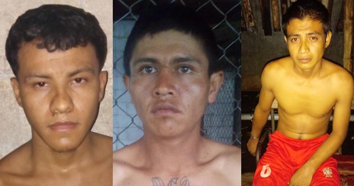 Pandilleros y agresores sexuales capturados en diferentes puntos del país