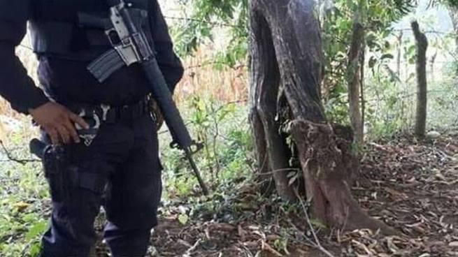 Sujetos desconocidos matan a un hombre al interior de una milpa en San Vicente