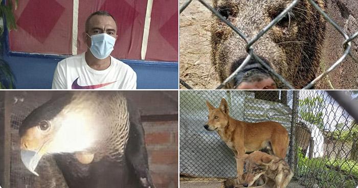 Mantenía en cautiverio diferentes animales silvestres