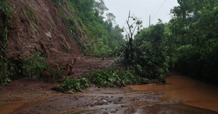 Lluvia de anoche provocó cuatro derrumbes en carretera Panorámica