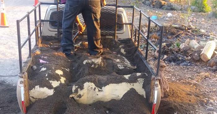 Condenan a personas que escondían droga abajo de tierra transportada en un pick up