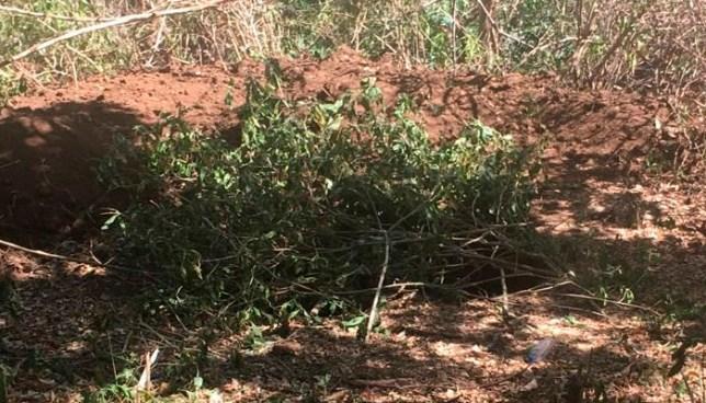 Encuentran osamentas de un hombre había sido desmembrado y enterrado en Usulután