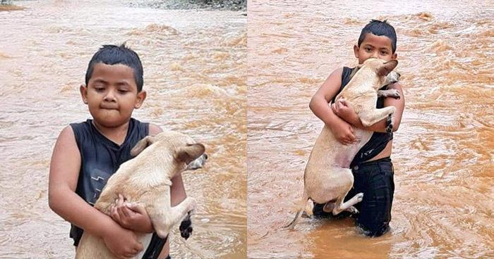 Cruzó fuerte corriente con su mascota en brazos para ser evacuados en Guatemala